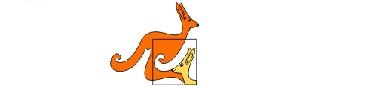 Mednarodni matematični kenguru – šolsko tekmovanje