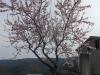 Planinski izlet ob reki Dragonji, 18. marec 2017